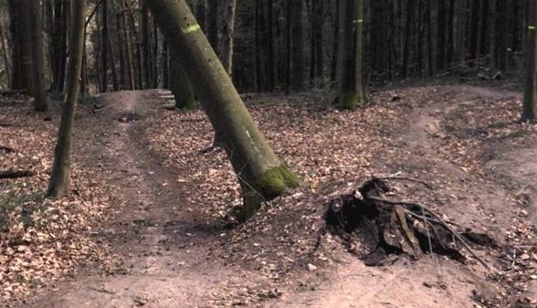Mountainbike Strecke Trier Baumsturz